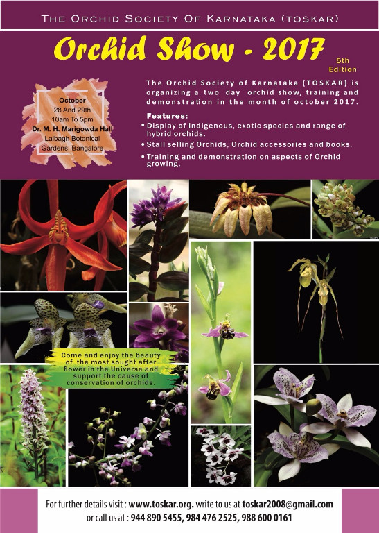 toskar orchid show 2017